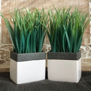 Other - Artificial Plants - Like New!